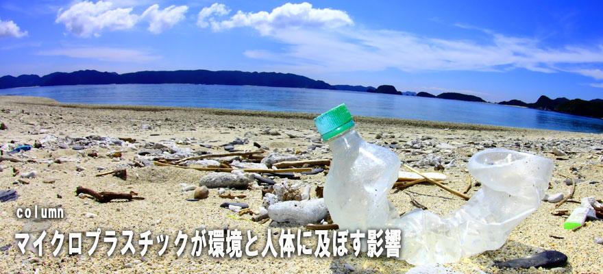 プラスチック 問題 マイクロ